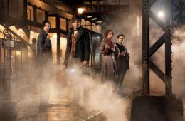 Katherine Waterston, Eddie Redmayne, Alison Sudol, and Dan Fogler in Fantastic Beasts and Where to Find Them (2016_