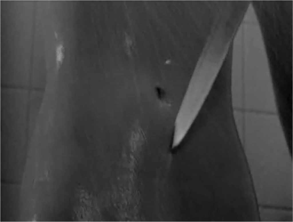 how does alfred hitchcock create anxiety in the shower scene from psycho? essay Shower scene psycho 1960 topics: alfred hitchcock, film, psycho pages: 1 (395 words) published the infamous shower scene in the 1960 film 'psycho' for it being made in 1960, this the editing creates an illusion in this scene that makes you feel like you are there so you do not fully.