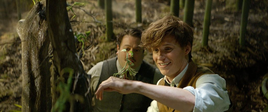 Dan Fogler and Eddie Redmayne and Baby Groot in FANTASTIC BEASTS.