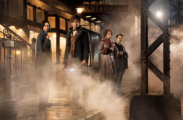 Katherine Waterston, Eddie Redmayne, Alison Sudol, and Dan Fogler in Fantastic Beasts and Where to Find Them (2016_